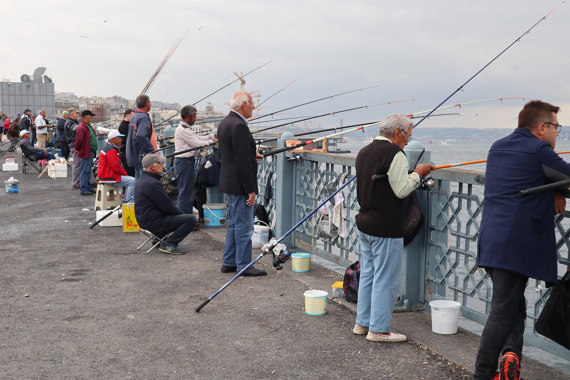 seo-digital-marketing-tasmania-fishing