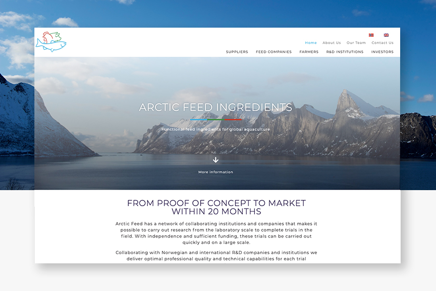 arctic-feed-ingredients-web-site-design