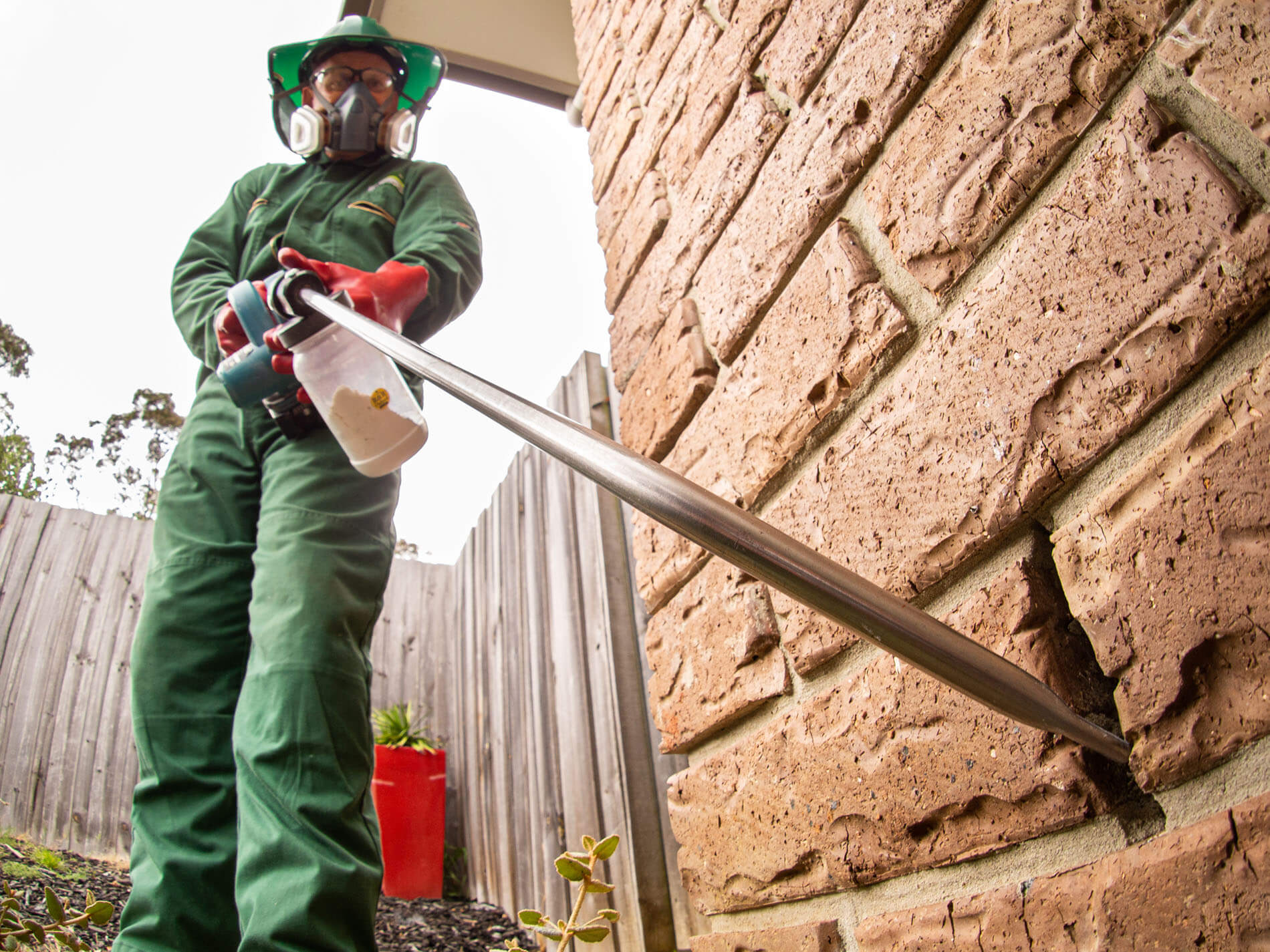 pied-piper-pest-control-services-hobart-southern-tasmania-9