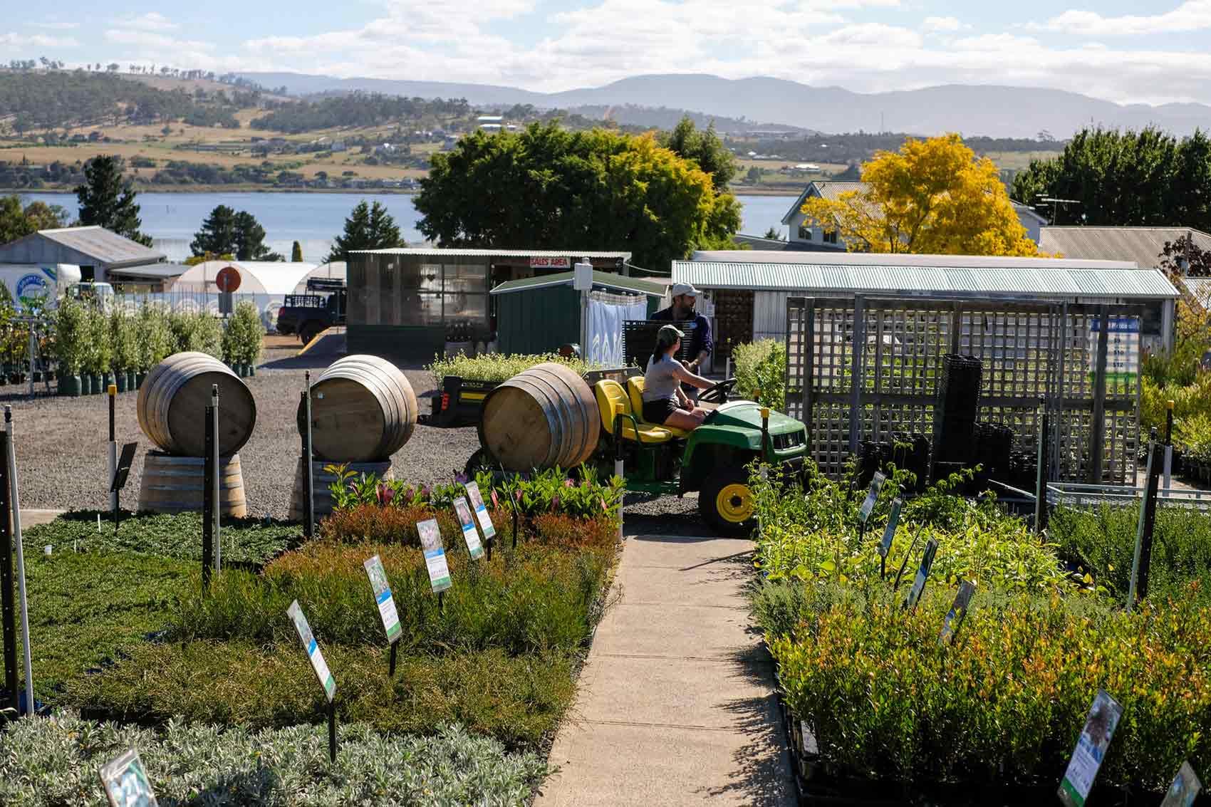 granton-plants-nursery-hobart-tasmania-launceston